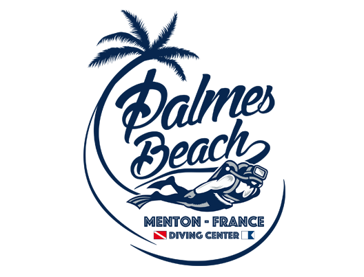 logo-palmes-beach-fond