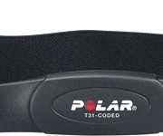 polar_belt